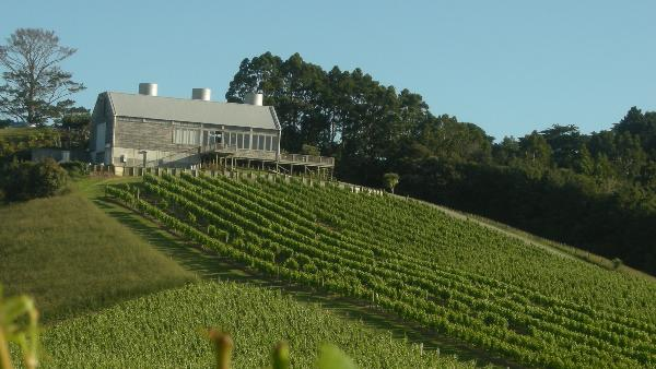 Mahurangi River Winery & Restaurant