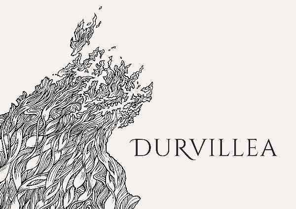 Durvillea Wines