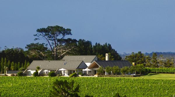 Takatu Vineyard