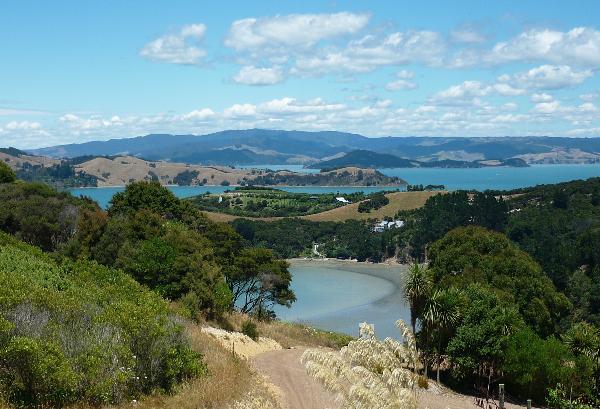 View east Vineyard