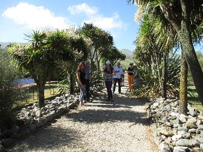 VITICULTURIST LINDSAY HILL IS A NZ FLAX FANATIC